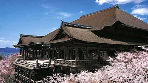 Visit : Osaka, Kyoto, Nara, Mt.Fuji, Hakone, Tokyo <br> Departure : from Osaka <br> Available : March - April