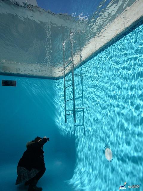 Japan's Famous Pool Exhibit