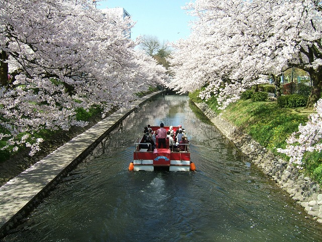 Find the Best Japan Tours at Japan Deluxe Tour