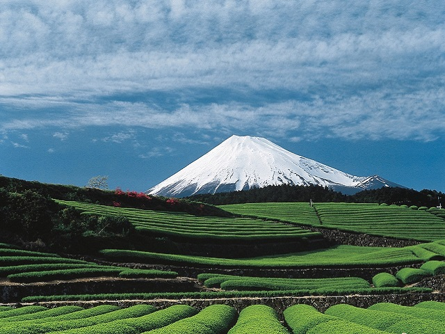 Mt. Fuji Is Opened For Climbing
