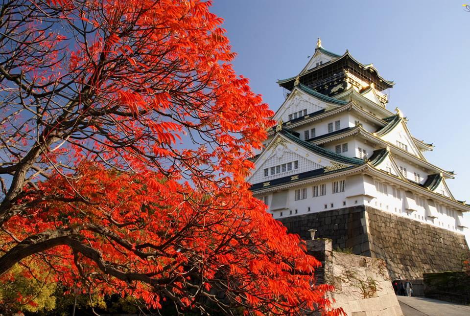 Toyotomi Hideyoshi's Osaka Castle