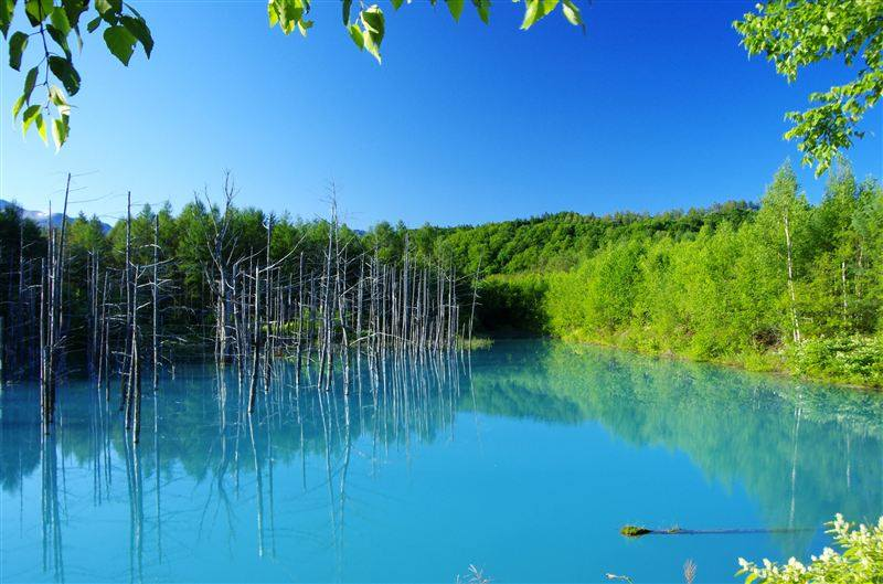 Beautiful Blue Pond