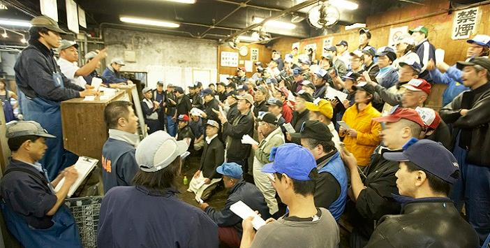 Join Our Tsukiji Auction Tours