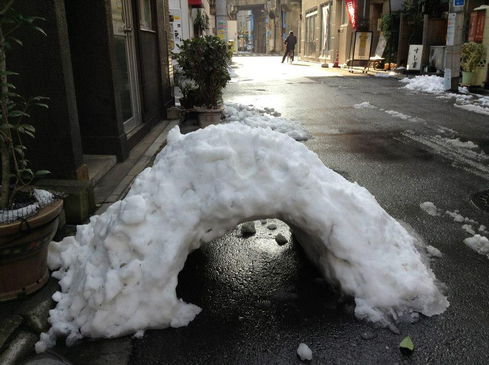 Tokyo Metropolitan Snow