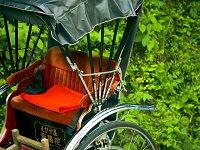 Rickshaw (Jin-riki-sha)