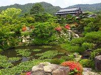 Mouri Garden
