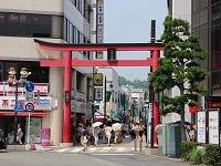 Komachi-dori