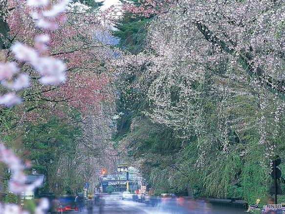 Akita | Destinations