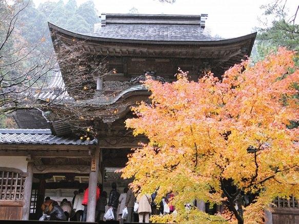 Fukui | Destinations