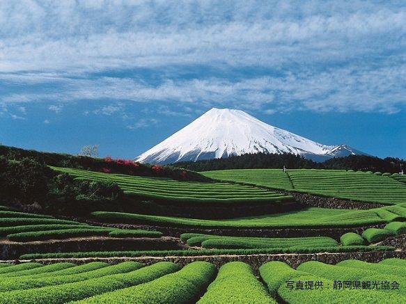 Shizuoka | Destinations