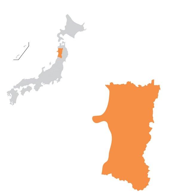 Akita | Statistics