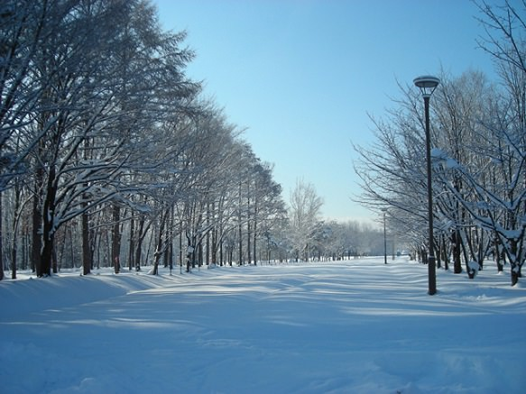 Hokkaido Asahikawa |<br>Coldest Recorded Temperature in Japan
