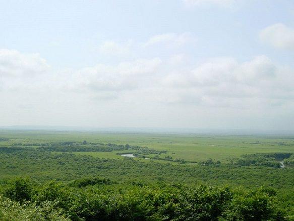 Japan's Largest Marsh