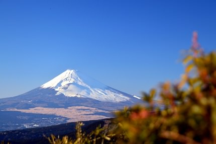 Mt. Fuji, Museums and Gardens