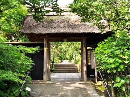 Kamakura | Shelter for Abused Women