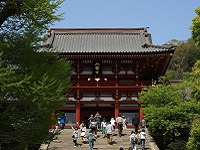 Kamakura Tsurugaoka Hachimangu