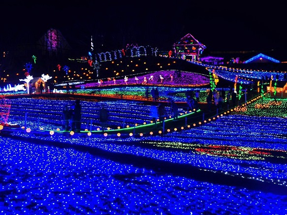 Country Farm Tokyo German Village | Magnificent Winter Illumination