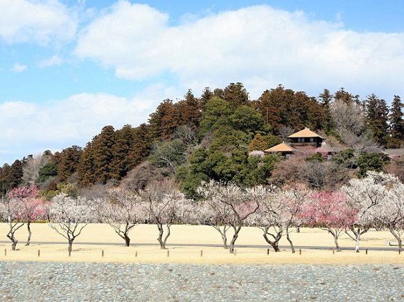 Ibaraki Mito | The Town of Natto