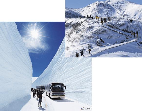 Toyama Murodo | Trail to Amazing Scenery