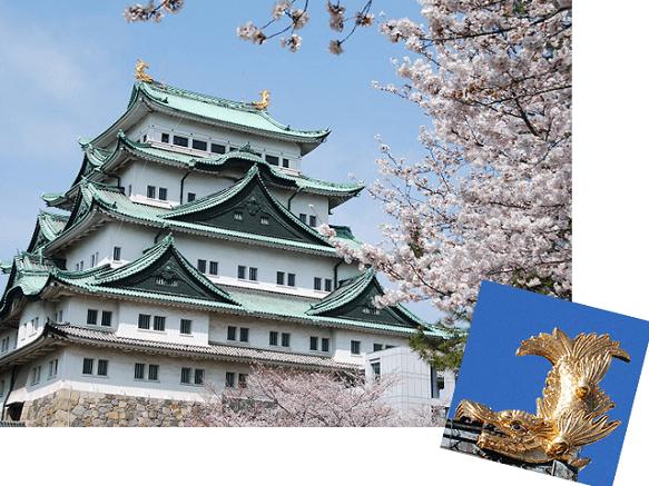 Nagoya Castle | The Reason for Nagoya's Prosperity