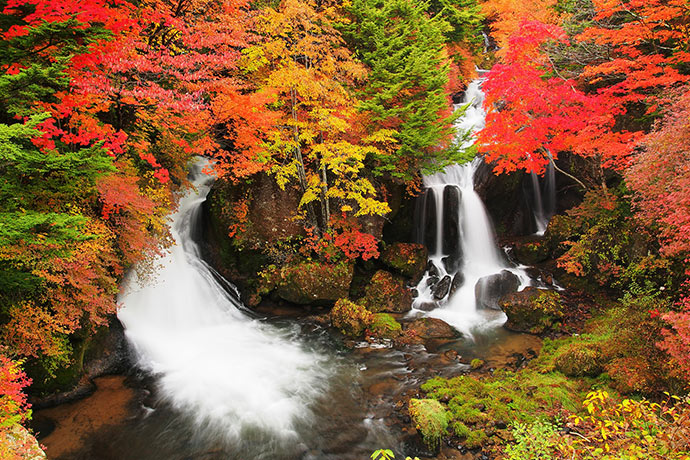 Tochigi has a lot of beautiful autumn foliage.