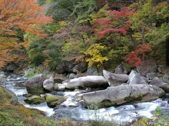 Yamanashi Shosenkyo Gorge | Pleasant Hike with Beautiful Scenery