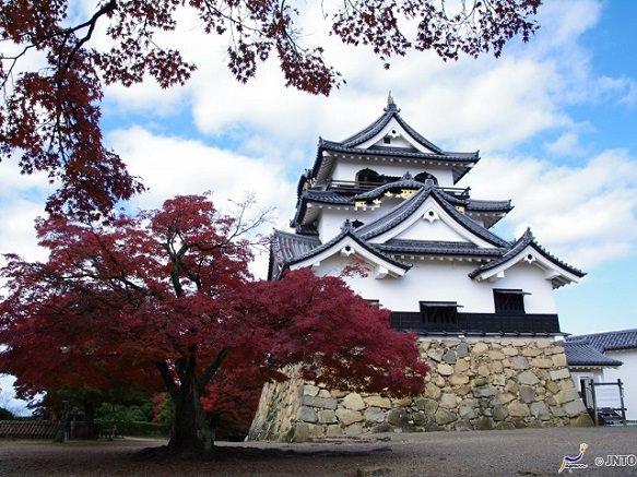 Shiga Hikone Castle