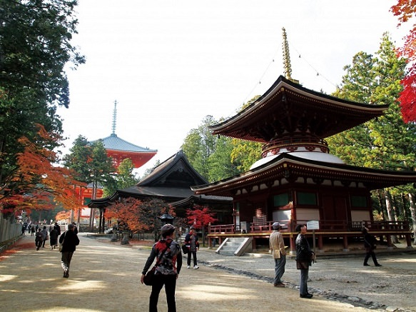 Temple for Toyotomi Hideyoshi's Mother | Mt. Koya-san