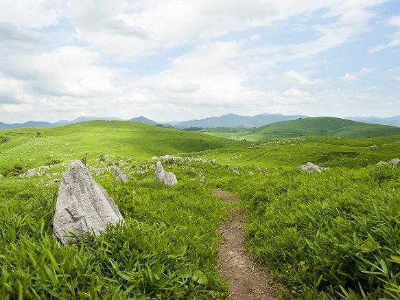 Yamaguchi Akiyoshidai |  Largest Limestone Karst Plateau