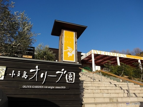 Kagawa Olive Park | Japan's First Olive Cultivation
