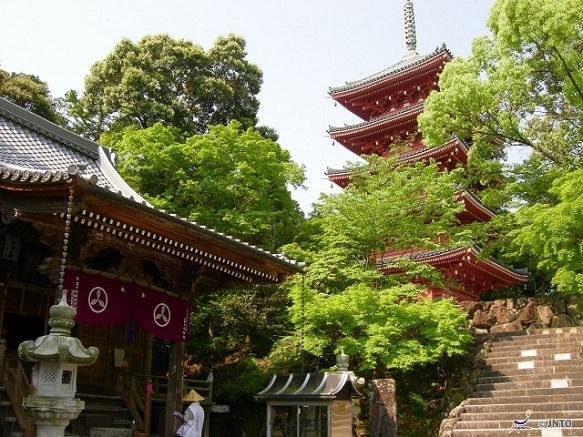 Kochi Chikurinji Temple | 31st of Shikoku 88 Temple Pilgrimage