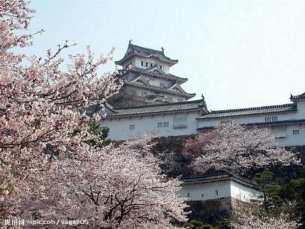 Kumamoto   Government and Economic Center