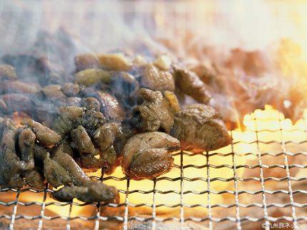 Miyazaki Jidori | Char-grilled Chicken