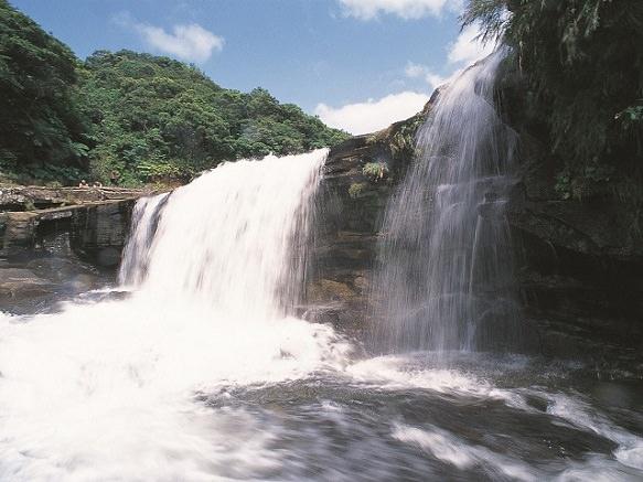 Okinawa Iriomote Island | Island of Jungles