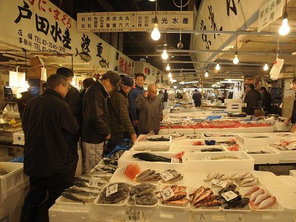 Tokyo Tsukiji Fish Market   Witness the Amazing Tuna Auction