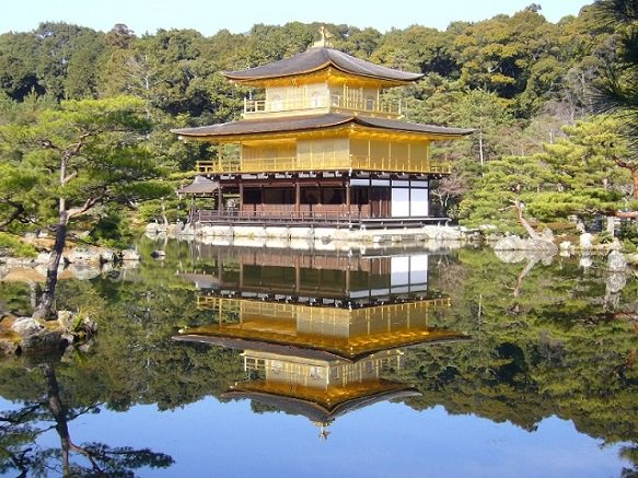 Kyoto Golden Pavilion | Temple Covered in Gold Leaf