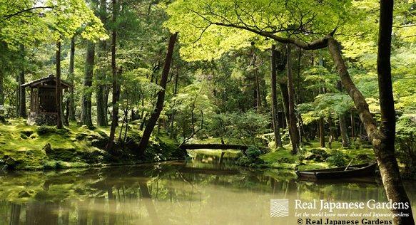 Koke-dera | Kyoto's Moss Temple