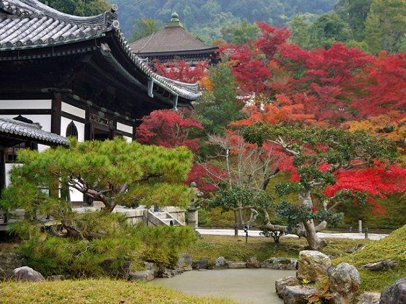Kyoto Kodaiji Temple   Beautiful Bamboo Grove and Tea Houses