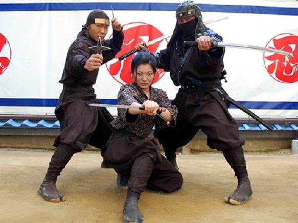 Ninja | Covert agent or mercenary of feudal Japan