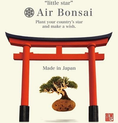 <q>Little Star</q> Air Bonsai