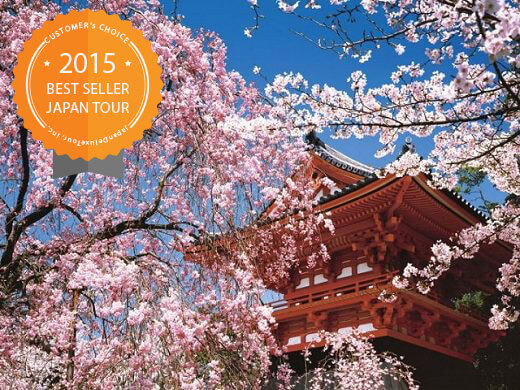 1. Grand Cherry Blossom Tours<a name=grand2></a>