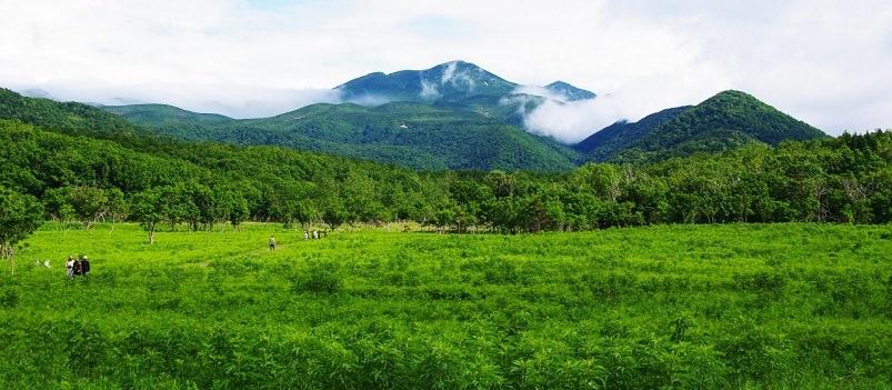 Nature Lover's Hokkaido 5 Days