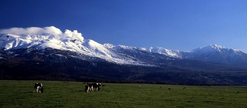 Scenic Beauty & Gourmet Hokkaido 7 Days