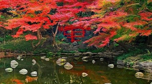 Autumn Japan Tours 2017