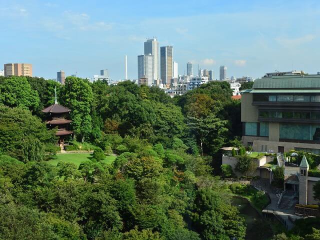 Enjoy Tokyo's beautiful garden