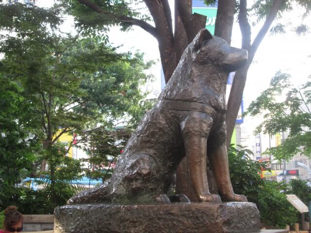 Travel Japan: Hachiko Statue Meet up!