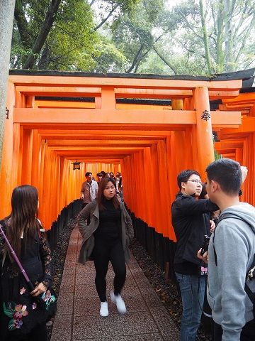 Fushimi Inari Taisha/ Gion District