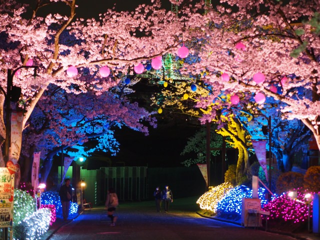 Have a Romantic Time in Yomiuri Land