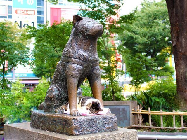 Tokyo Shibuya | Akikta Dog Statue as a Meet up Spot