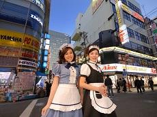 Maid Cafe (Optional)